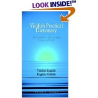 Hippocrene Yiddish - English/Yiddish/English Practical Dictionary