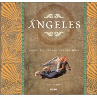 Angeles: Sabiduria, introspeccion, guia / Angel Inspirations: Essential Wisdom, Insight and Guidance