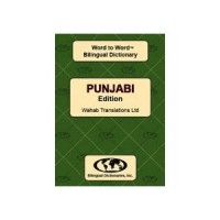 Punjabi Word to Word Dictionary (Paperback)