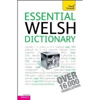 Essential Welsh Dictionary: A Teach Yourself Guide (Paperback)