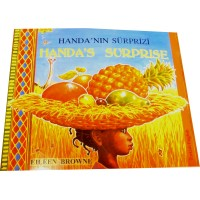 Handa's Surprise in Turkish & English (PB)