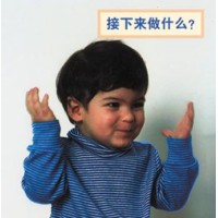 WHAT HAPPENS NEXT? board book in Chinese (simp) only