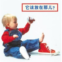 WHERE DOES IT GO? board book in Chinese (simp) only
