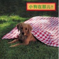WHERE'S THE PUPPY? board book in Chinese (simp) Only