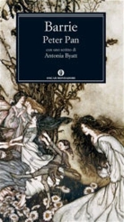 peter pan book report summary Looking for the plot summary of peter pan  whether you need an overview of peter pan or a detailed summary of the book for a college project or just for fun, readcentralcom brings you the book-wise summaries of peter pan for free.