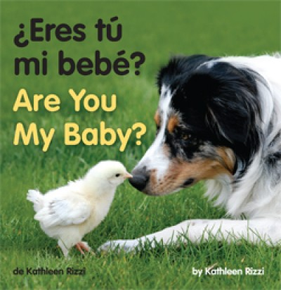 ARE YOU MY BABY? in Spanish & English