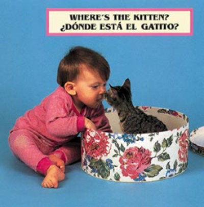 WHERE'S THE KITTEN? board book in Spanish & English