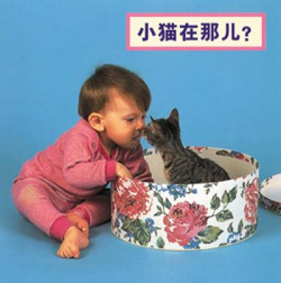 WHERE'S THE KITTEN? board book in Chinese (simp) only