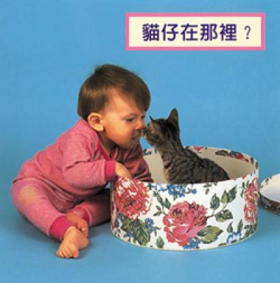 WHERE'S THE KITTEN? board book in Chinese (trad) only