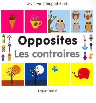 Bilingual Book - Opposites in French & English [HB]