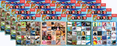 Photo Bingo - Set of 16 Games - Italian Puzzle Game for Kids, Classrooms