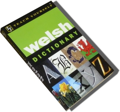 NTC - Teach Yourself Welsh Dictionary (Paperback)
